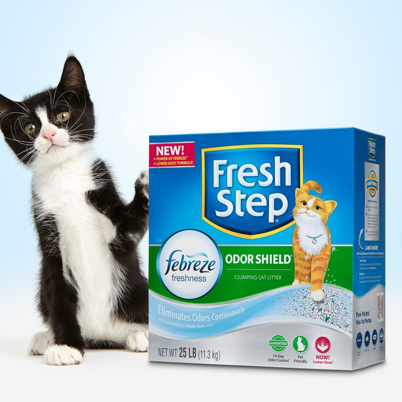 Feature:  Innovation Fresh Step with Febreze